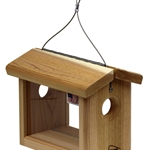 Hanging Bluebird Feeder